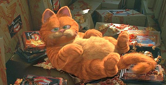 Garfield, cat, cartoon, Jim Davis