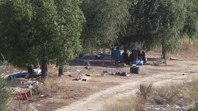 Vuelven las chabolas al Charco de la Pava tras la operación policial