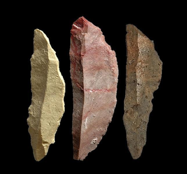Las armas que pudieron acabar con los neandertales