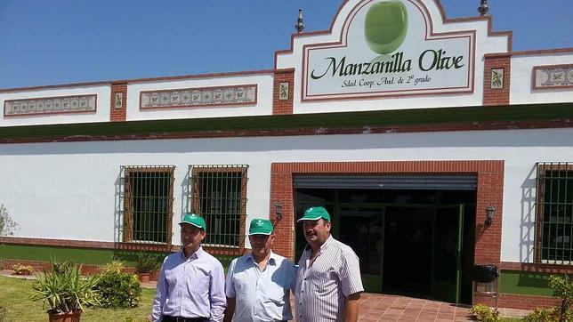 Manzanilla Olive muestra sus instalaciones de Utrera