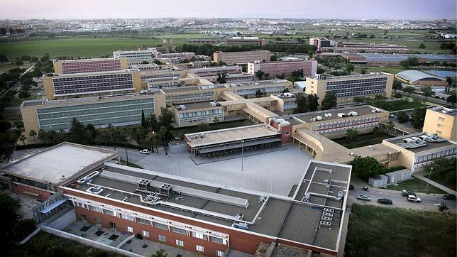 La UPO es la segunda universidad española que más investiga