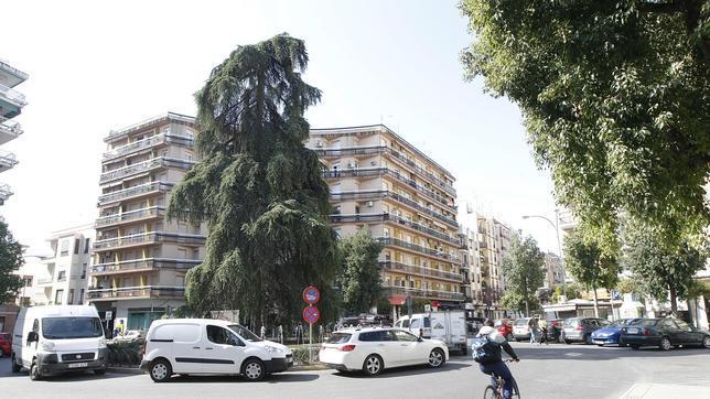 El plan municipal de peatonalizaci n de calles empezar for Barrio ciudad jardin