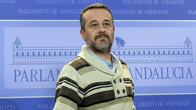 El portavoz del grupo parlamentario de Izquierda Unida, José Antonio Castro, este miércoles