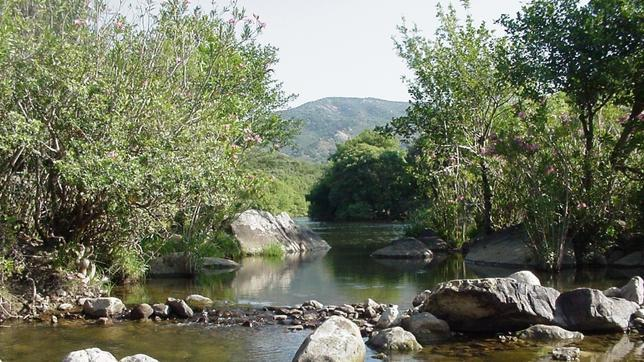 Imagen del Parque Natural de los Alcornocales