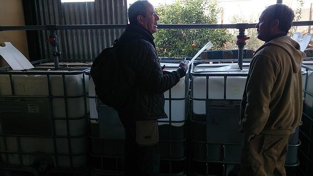 Bidones preparados con el compost para usarlos en una explotación de cítricos