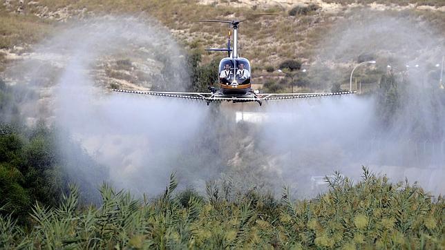 Una avioneta realiza un tratamiento de fumigación en un monte