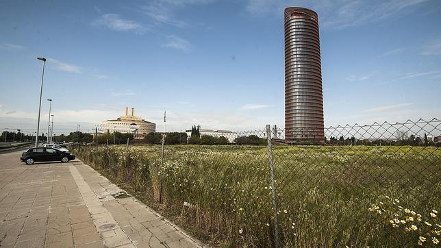 Los jaramagos rodean a la Torre Pelli