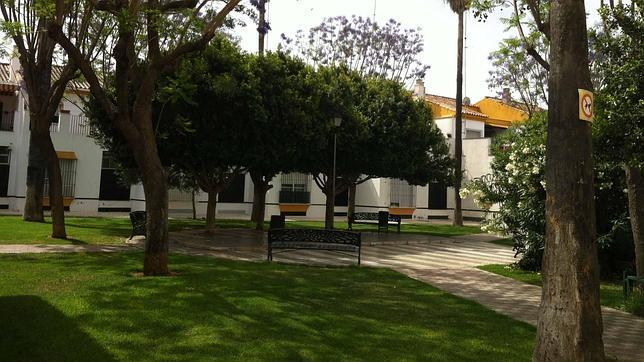 Un impulso para los jardines m s bonitos de utrera for Jardines de alberto granada
