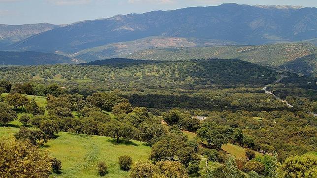 Andaluc a es una de las regiones m s baratas para el - Casa rural sierra morena ...