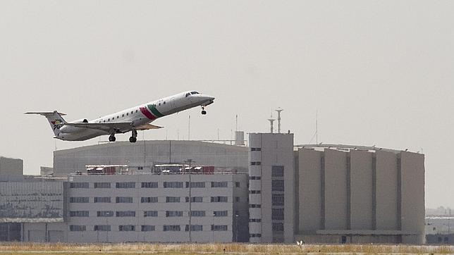 Un avión de la compañía portuguesa TAP sobrevuela Sevilla
