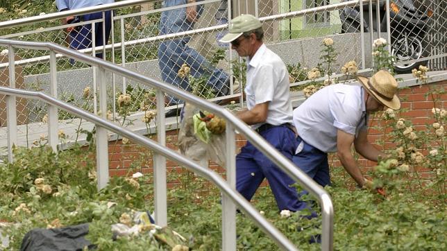 Critican a iu por privatizar con doble lenguaje for Sindicato jardineros