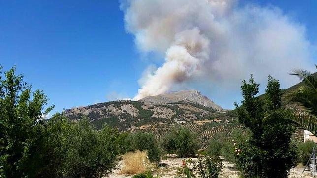 incendio forestal natural: