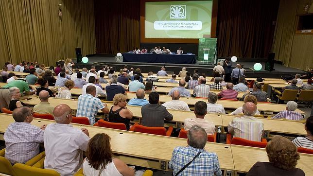 XVII Congreso Nacional Extraordinario del Partido Andalucista, este sábado