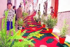 Las alfombras multicolores del corpus cumplen su 50 - Alfombras toledo ...