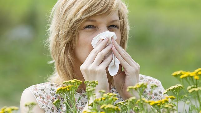 Si eres alérgico al olivo, te espera una primavera muy difícil
