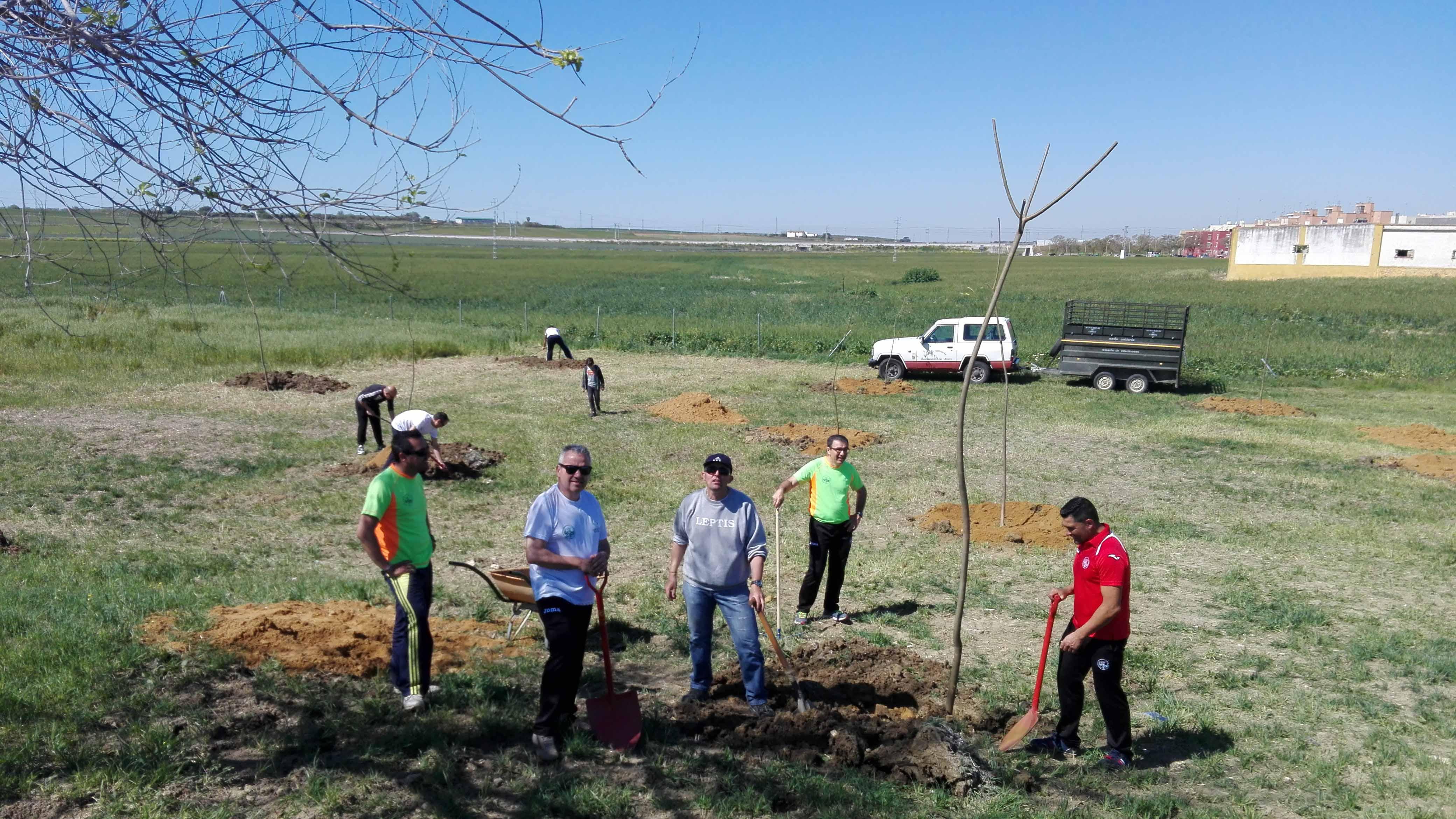 Los miembros de la asociación utrerana en plena plantación
