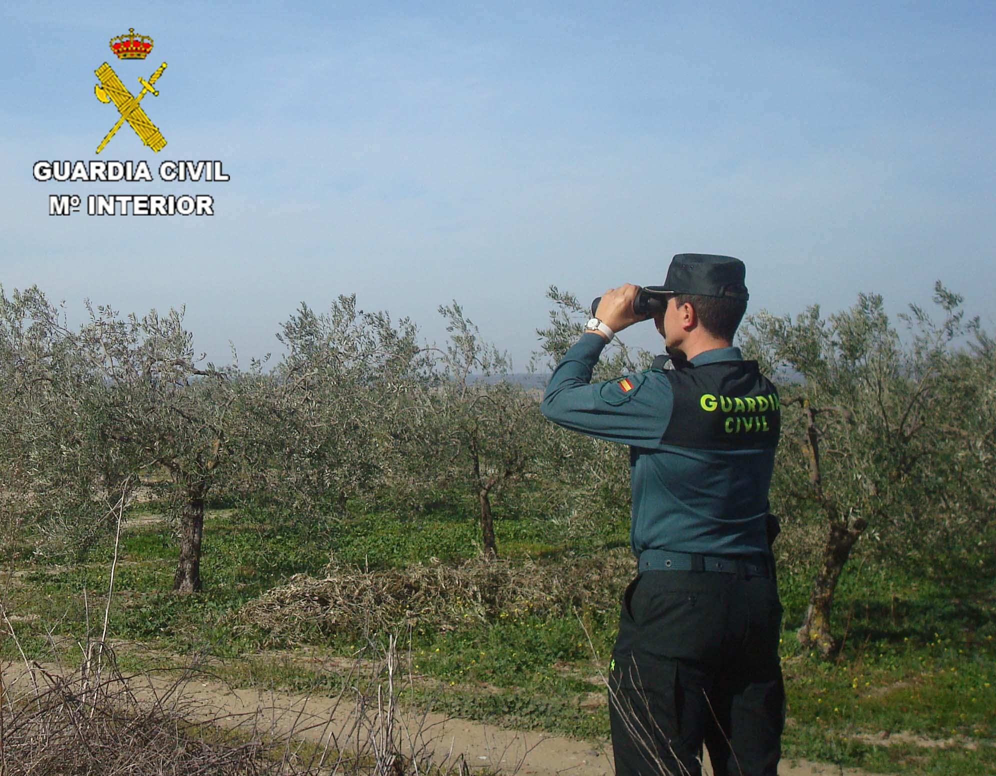 Un guardia vigila una finca agrícola