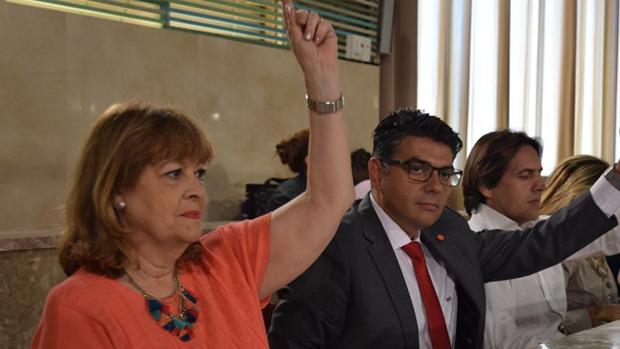 La concejal Mabel Hernández, junto al portavoz Miguel Cazorla, durante una votación en pleno./ ABC