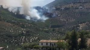 El incendio se produjo en una zona próxima a un núcleo de viviendas.