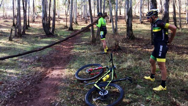 Troncos, cuerdas entre árboles y piedras se colocan como obstáculos para provocar caídas