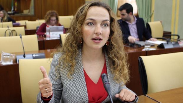 La parlamentaria de Ciudadanos, Marta Escrivá ha formulado la petición de ayuda a la Junta para una asociación visueña