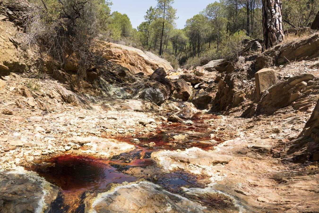 Nacimiento del Río Tinto