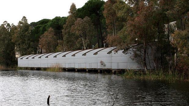 Aspecto de las cabañas bungaló construidas en el paraje de La Torerera