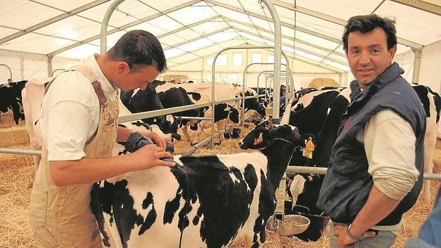 La junta vuelve a dejar en el aire la oficina comarcal agraria for Oficina comarcal agraria