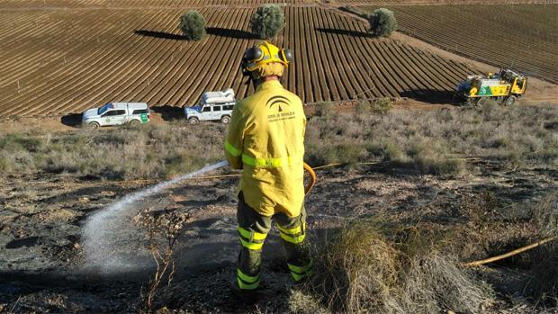 El trabajador del Infoca ha fallecido mientras realizaba tareas preventivas contra incendios forestales