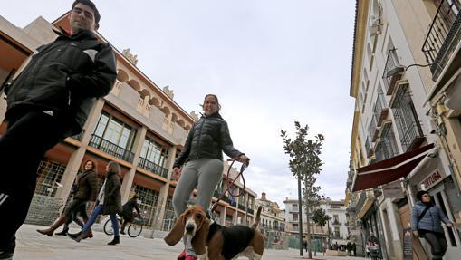 Una joven pasea con un perro por Capitulares tras su reforma