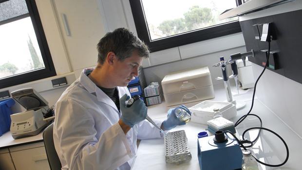 Laboratorio del Instituto Sanitario de Investigación Imibic, gestionado por Fibico