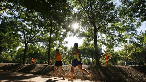 Circuito Parque Cruz Conde Cordoba : Diez planes de ocio en córdoba alternativos a lasemana santa