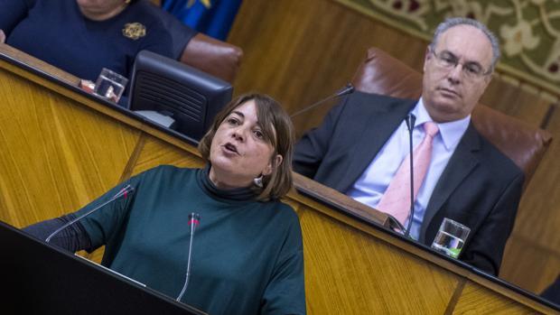 La portavoz adjunta de IU Elena Cortés durante una intervención en el Parlamento andaluz