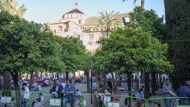 Público en el Patio de los Naranjos en Semana Santa