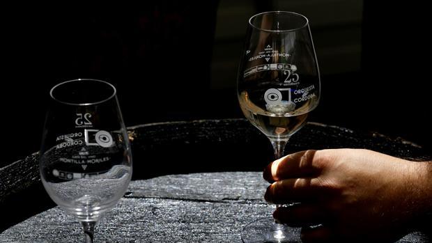 Las copas que han sustituido a los catavinos en la Cata del Vino Montilla-Moriles