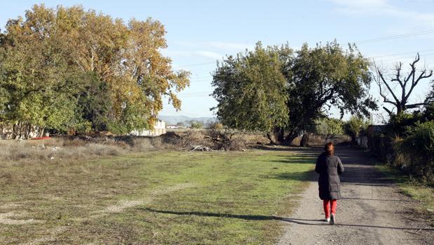 Una mujer pasea por el Camino de la Barca
