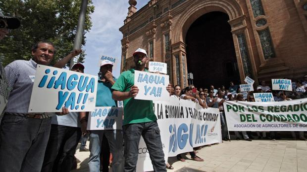 Regantes de Huelva se manifiestan ante la delegación del Gobierno en Sevilla