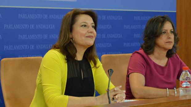 Carmen Crespo, durante su intervención este miéroles