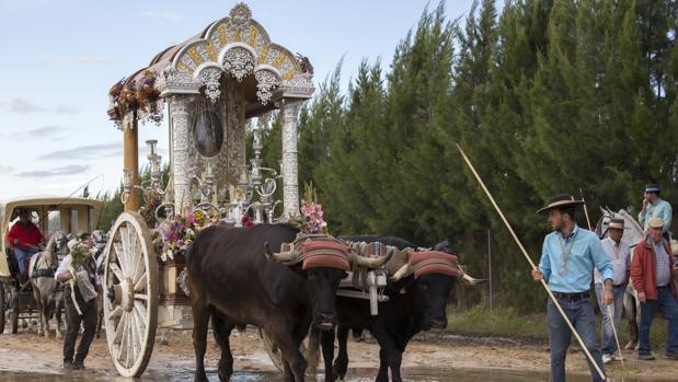 La hermandad del Rocío de Córdoba, durante el camino del pasado año