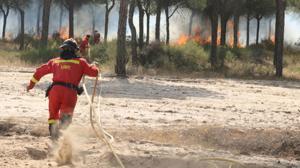 El delegado del Gobierno en Andalucía, Antonio Sanz, siguiendo las labores de extinción del incendio de Doñana