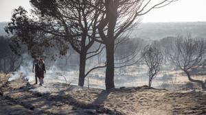 Controlado otro incendio en un paraje de Almonte