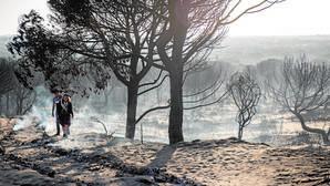 El Parque Nacional de Doñana se salva de momento del fuego