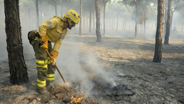 La labor del Infoca y la UME ha sido fundamental para evitar daños mayores en el entorno de Doñana