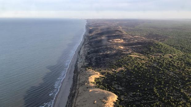 Vista aérea de la zona afectada por el incendio entre las localidades de Mazagón y Matalascañas