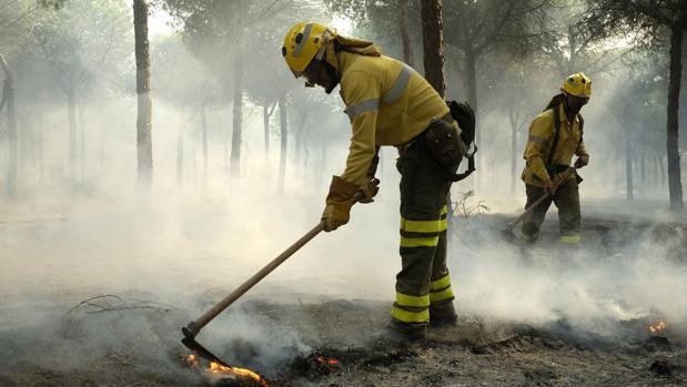 Un incendio se ha declarado en un paraje de Almonte