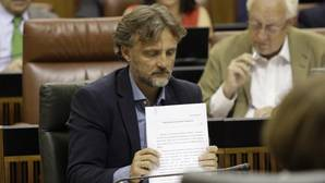 El consejero de Medio Ambiente, José Fiscal, en el Parlamento andaluz