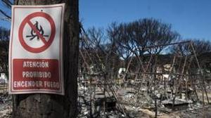 Estado en el que ha quedado en camping Doñana después del incendio de hace dos semanas