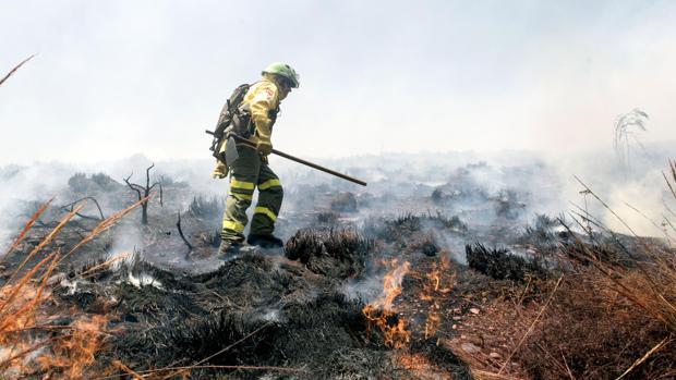 Miembro del Infoca, en labores de extinción del incendio del Paraje de la Alhambra