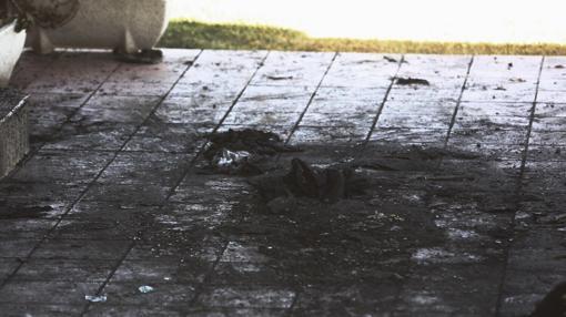 Detalle del suelo de la vivienda