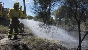 La carbonera trabajaba sin permiso cuando empezó el fuego de Doñana